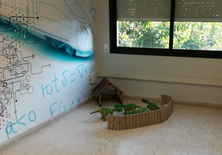 Taller de robòtica per als nens de l'Escola Mediterrània