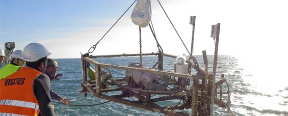 Marine Sciences and Engineering